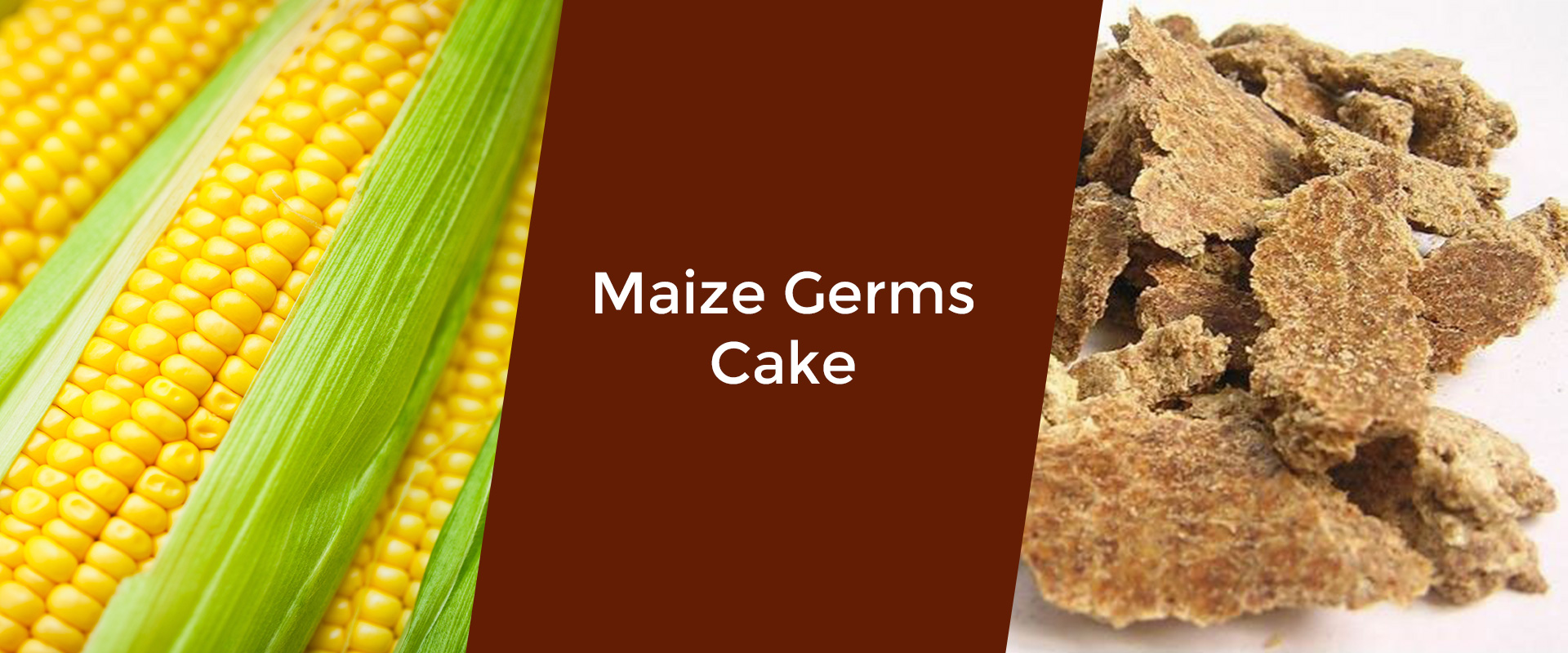 maize-germs-cake-welcome-broker