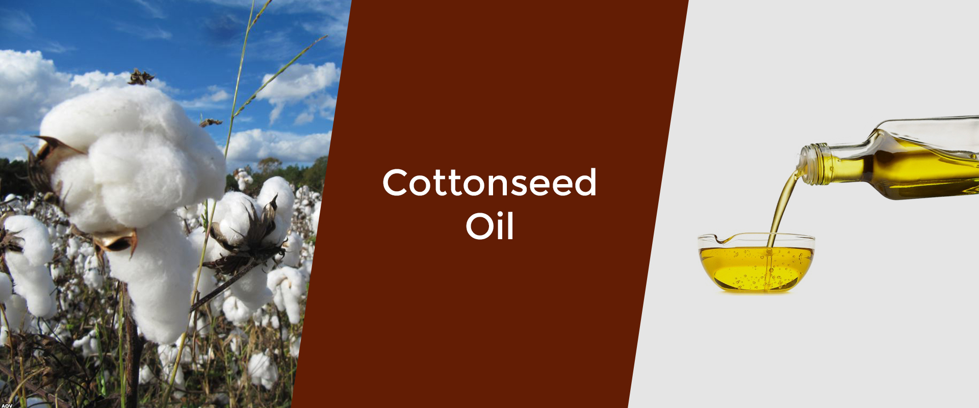 cottonseed-oil-welcome-broker